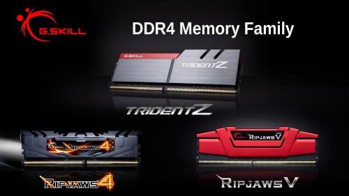 DDR4MemoryFamily.jpg