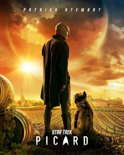 Screenshot_2019-12-24-Star-Trek-Picard-Poster-pc-games-webp-WEBP-Image-1280--1600-pixels---Scaled-57.jpg