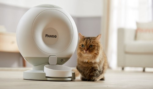 Pawbo-crunchy-cat-feeder-2048x1193.jpg